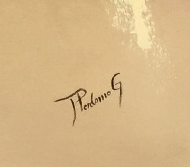 amanda perdomo Signature