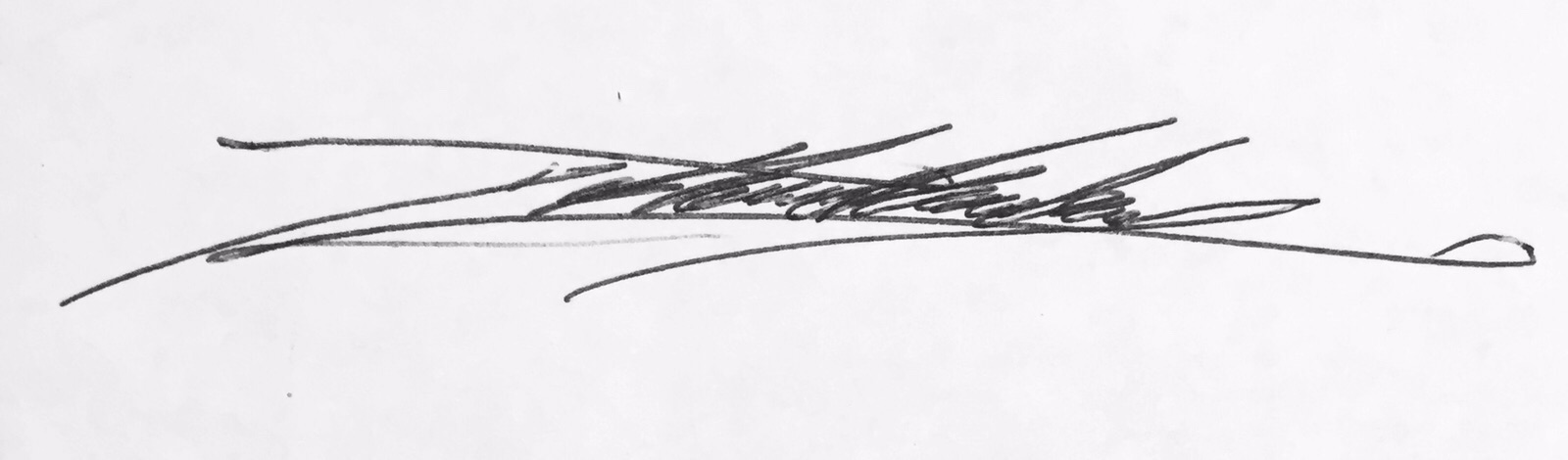 joshua healey lapena Signature