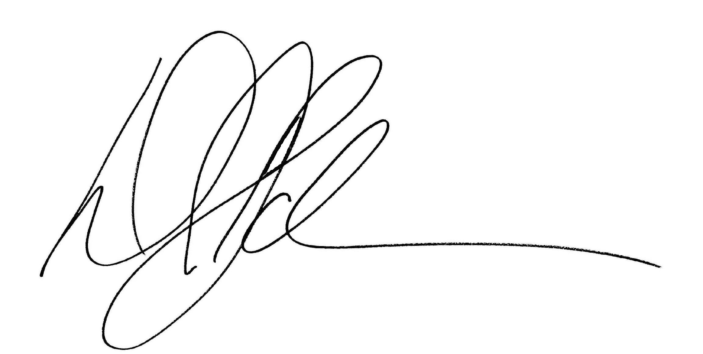 David Schmerer Signature