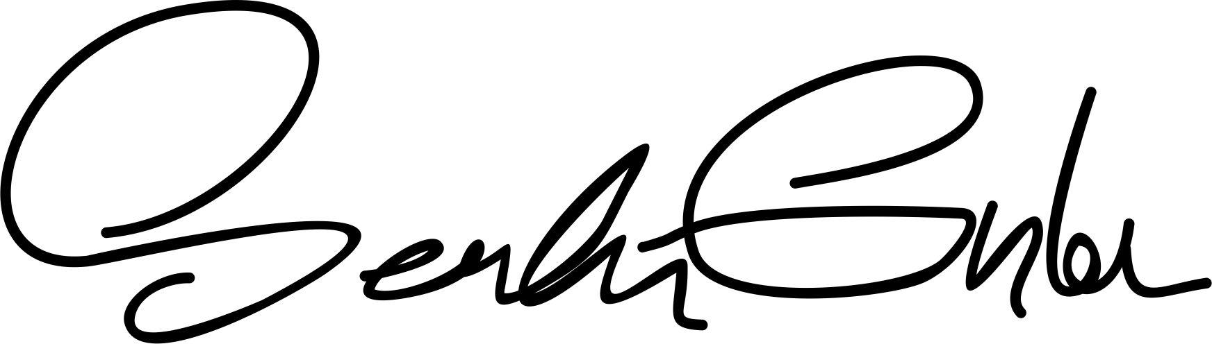 serdar gunler Signature