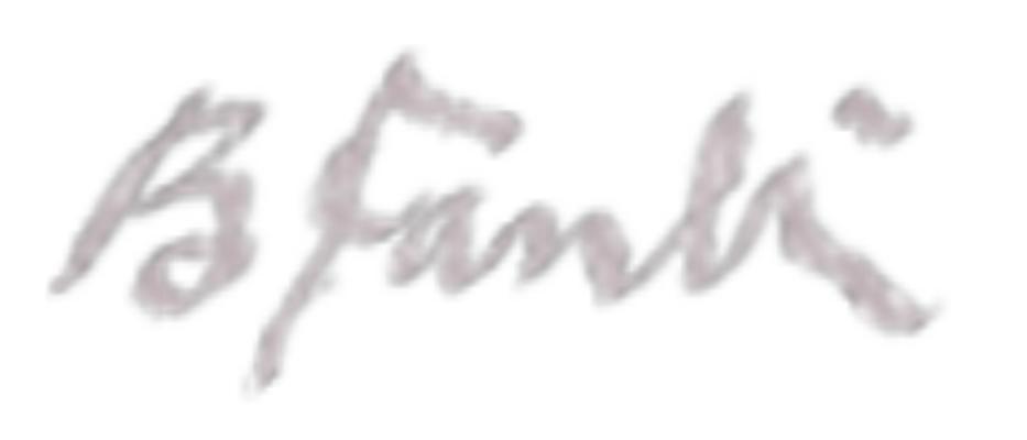 Bigan Fanli Signature