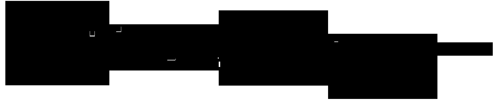 Raija Merilä Signature