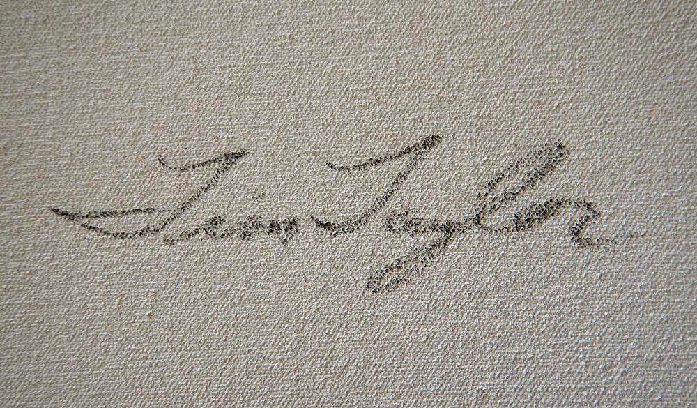 tim taylor Signature