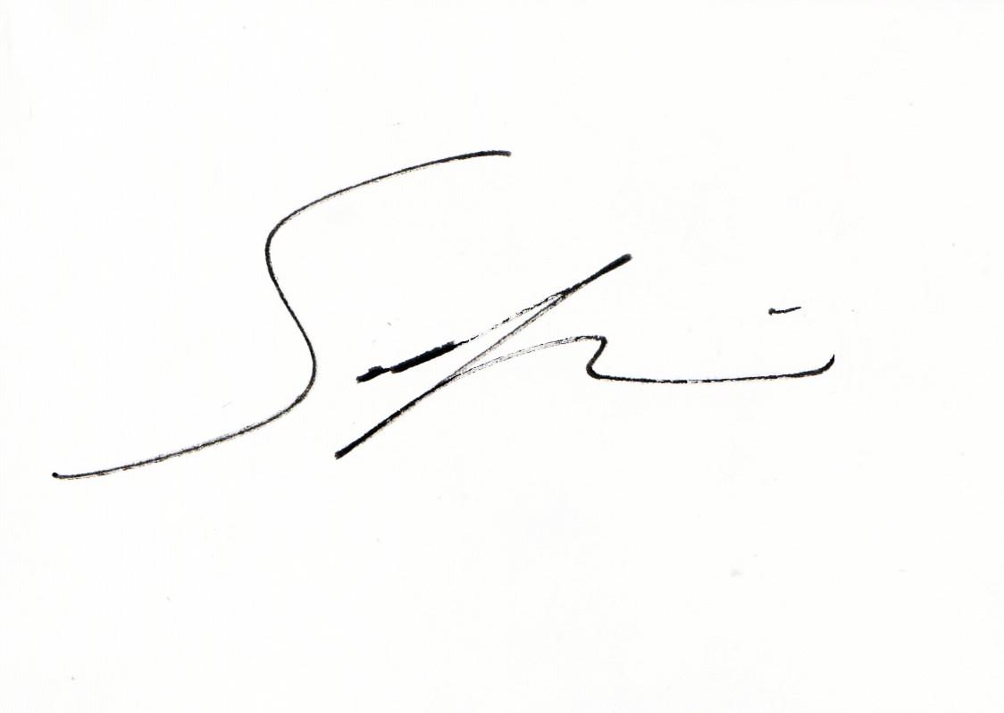 Sarkis S Signature