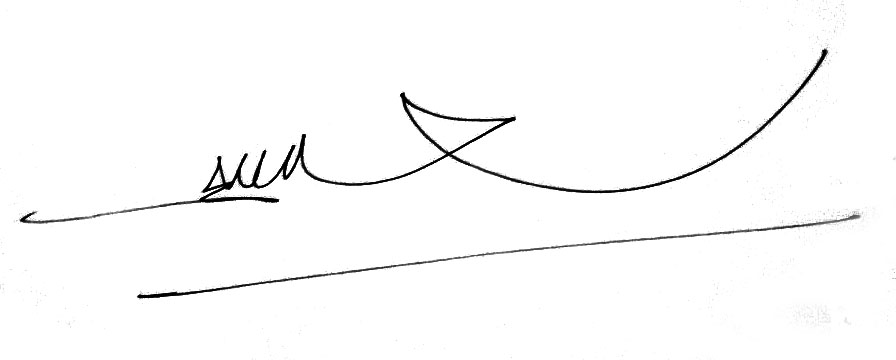 Sonny Hendrawan Signature