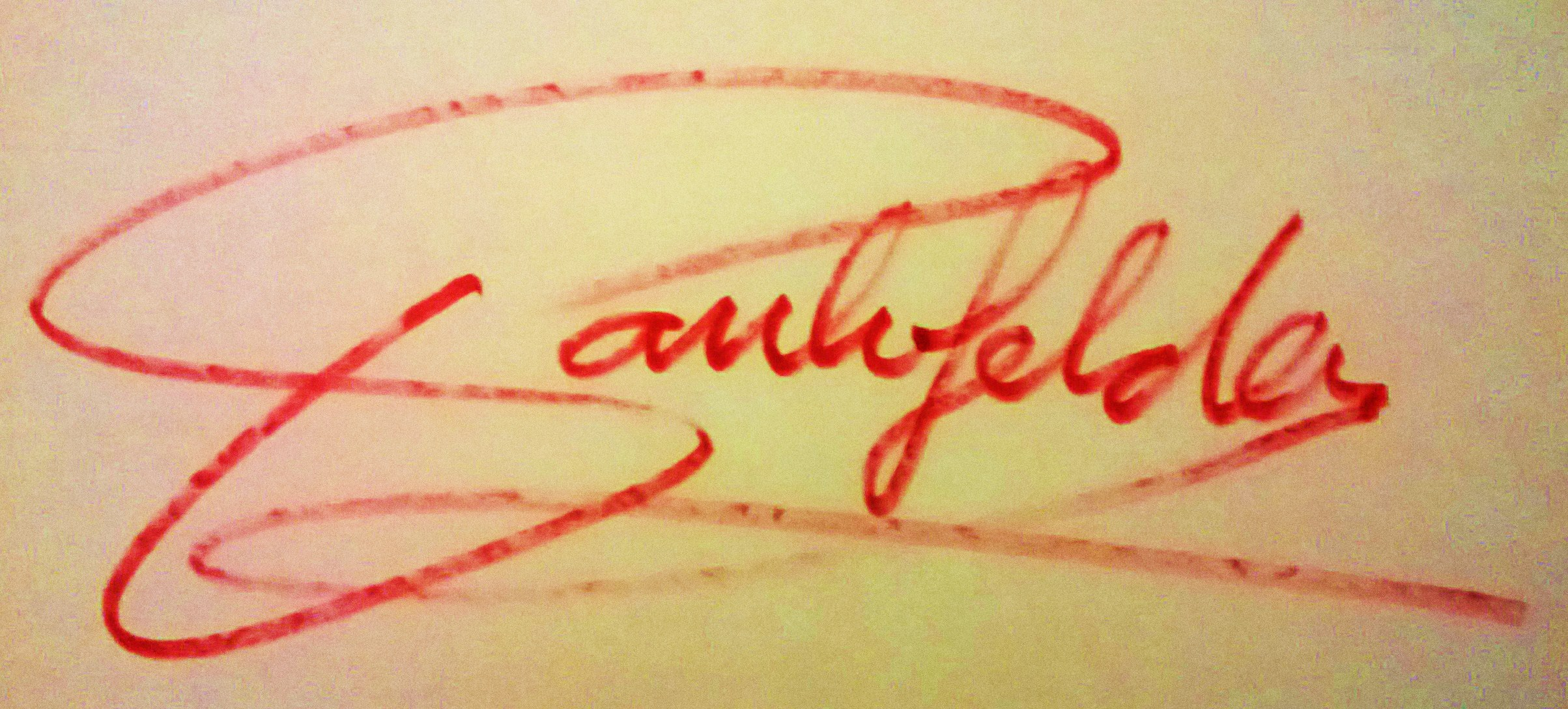 PAUL vanGelder Signature