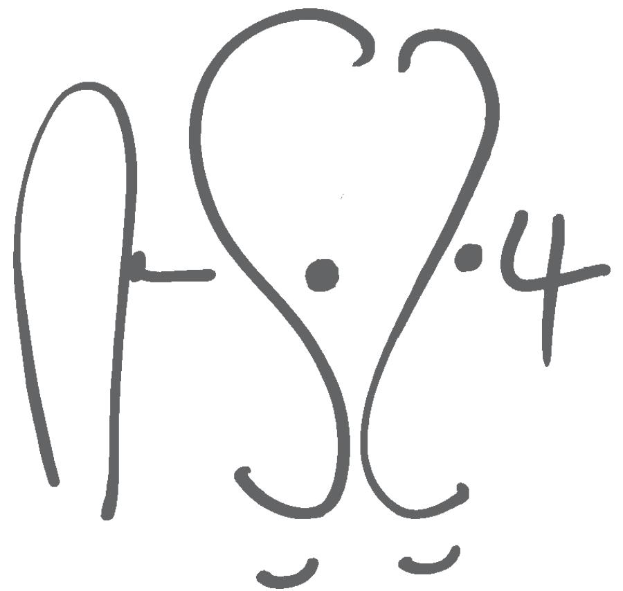Sándor Zoltán Nagy Signature
