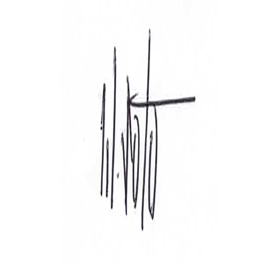 Wuilfredo Soto Signature