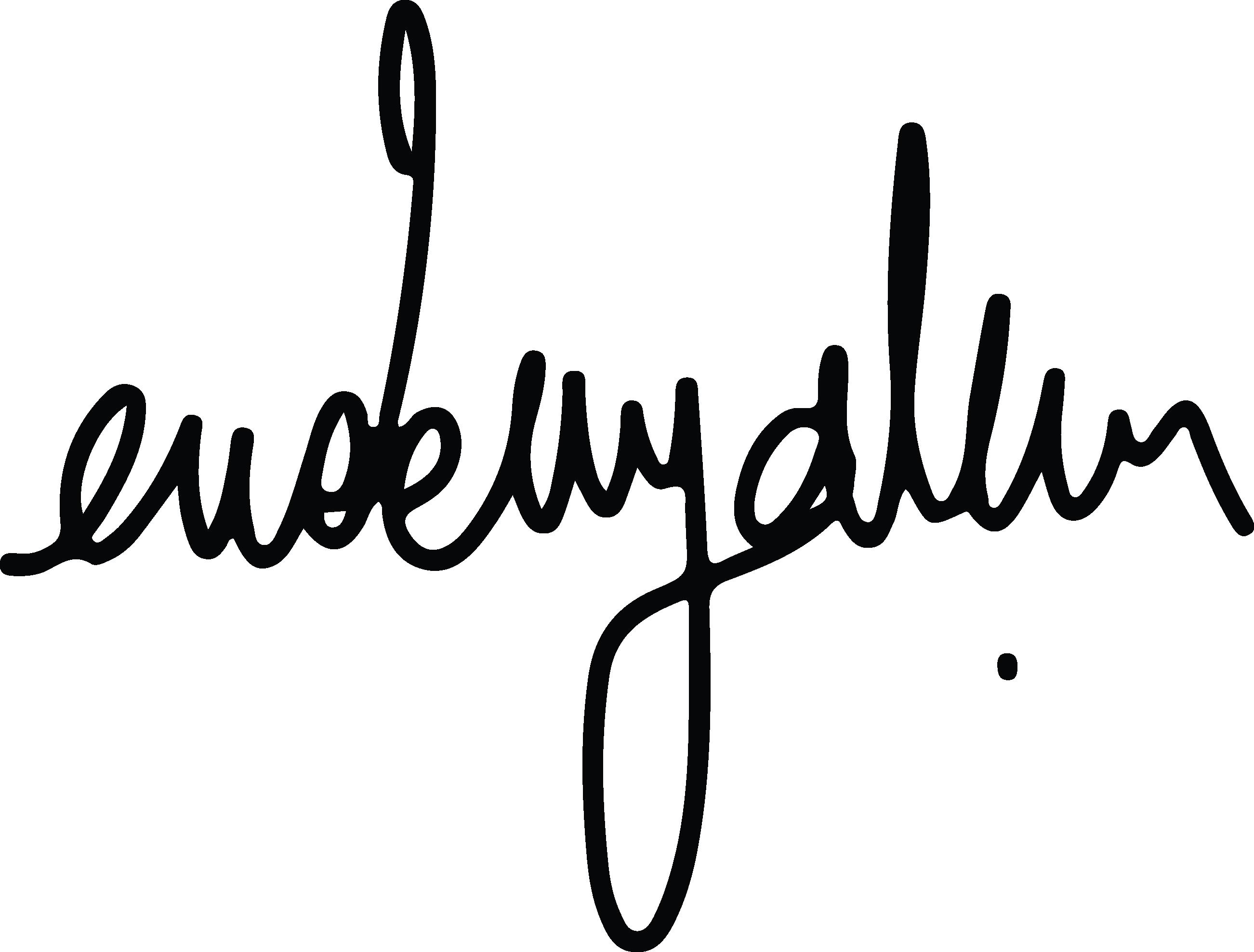 Erdem yalçın Signature