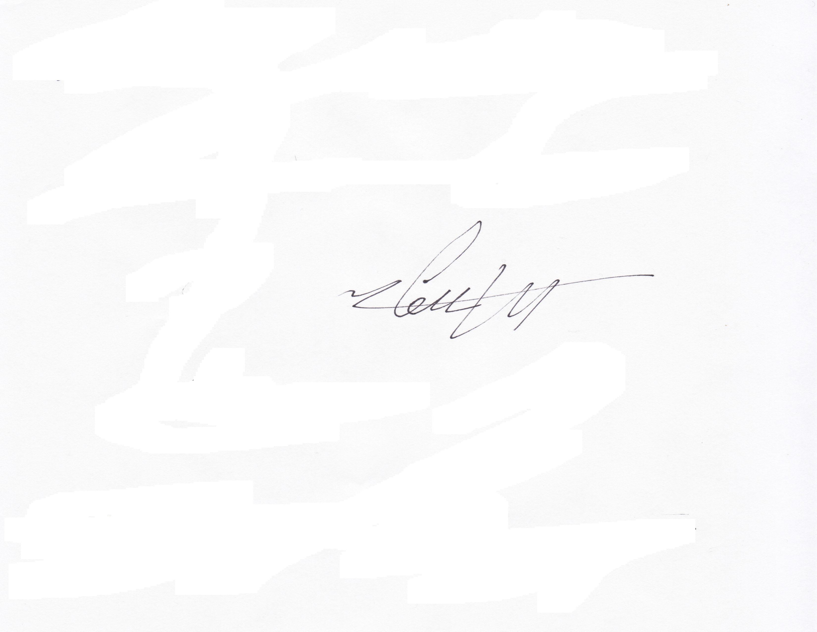 Ming Wong Signature