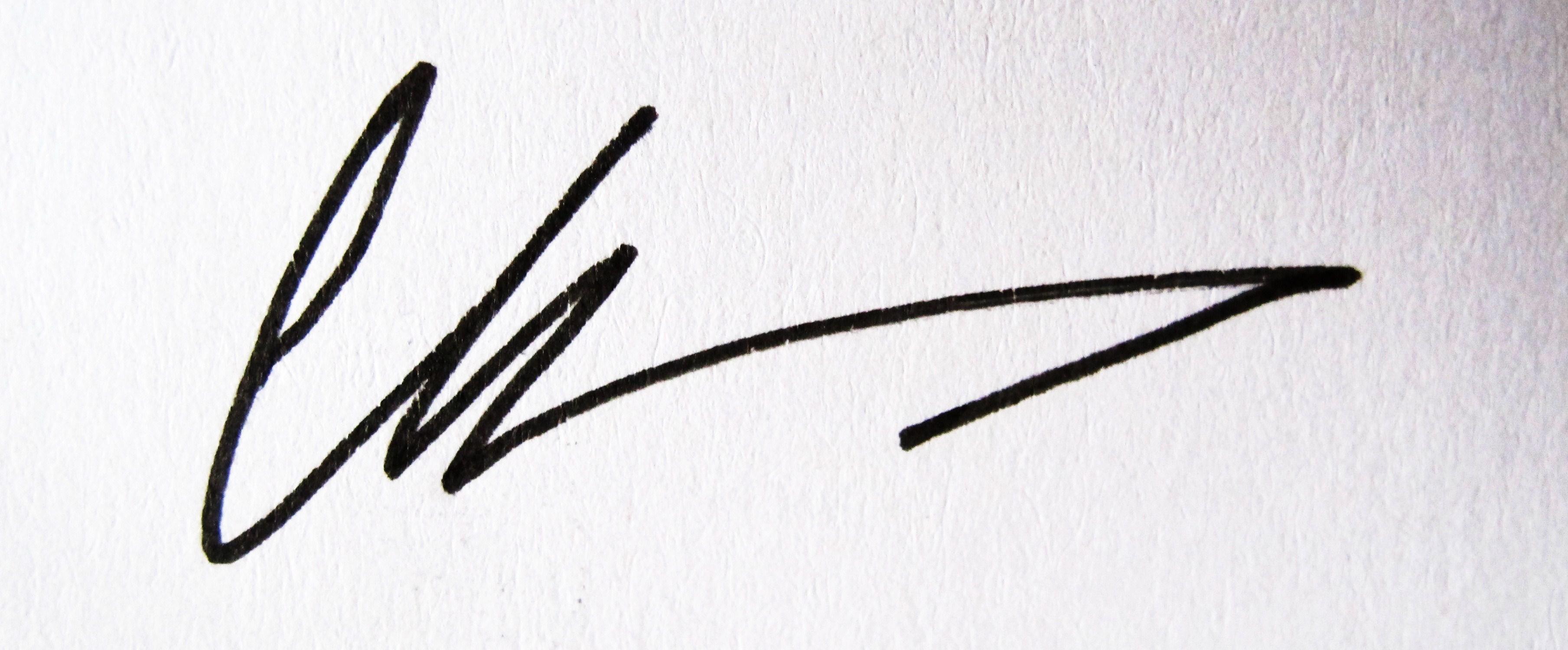 Diana Chelaru Signature