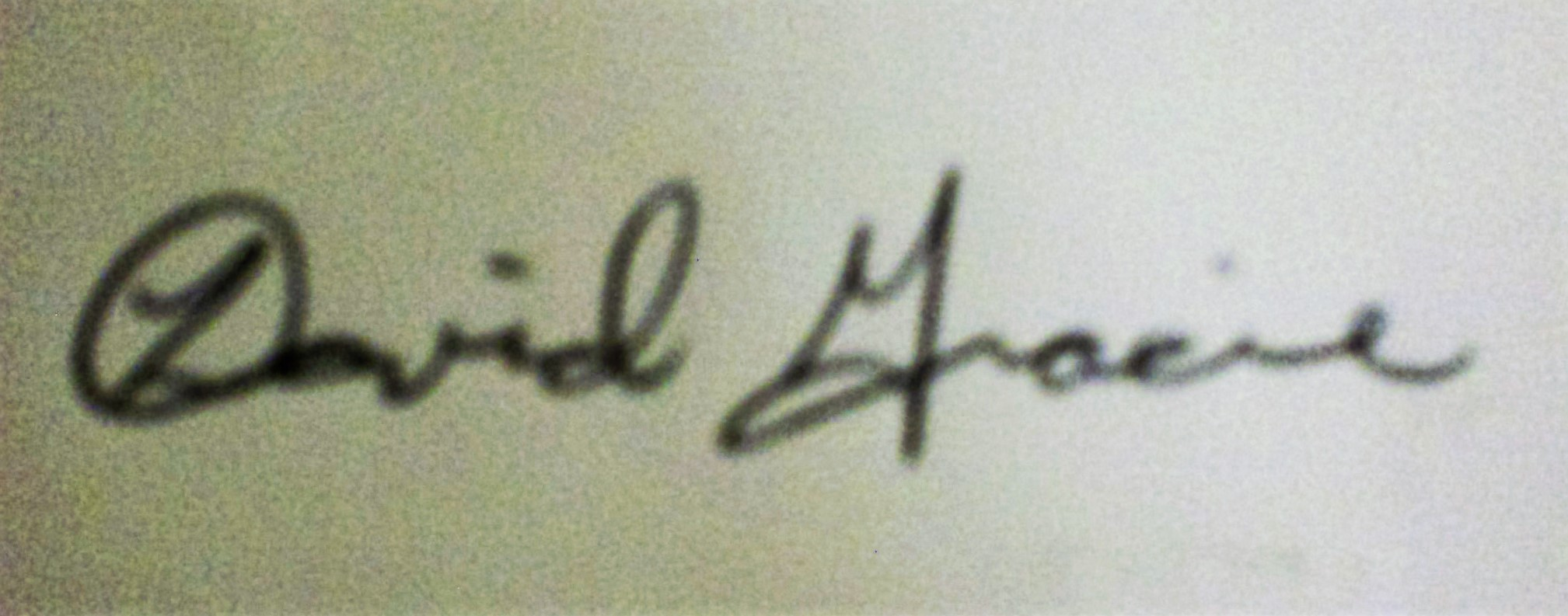 David Gracie Signature