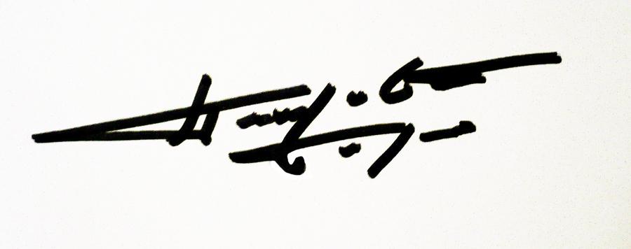 Borko Petrovic Signature