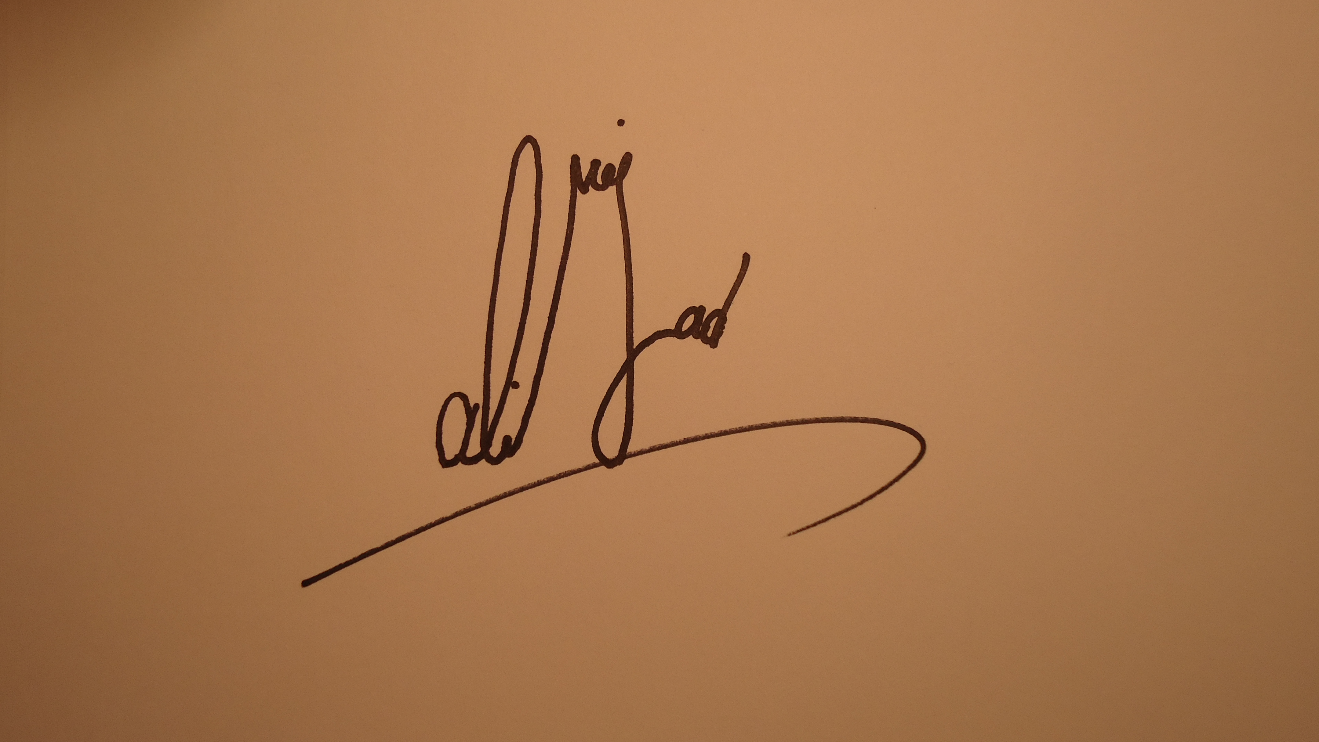 mohammad R Alinejad Signature