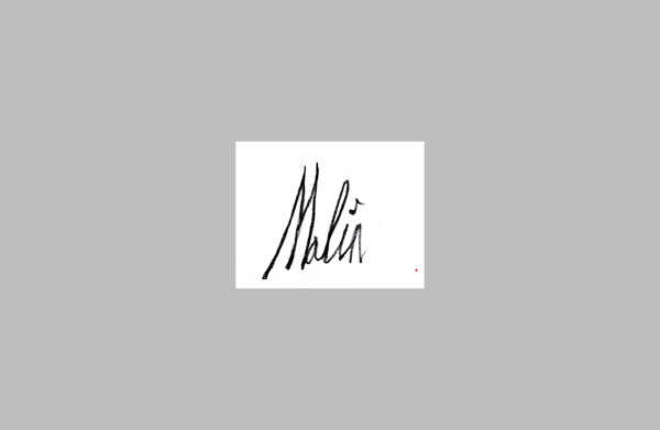 Marc Malin Signature