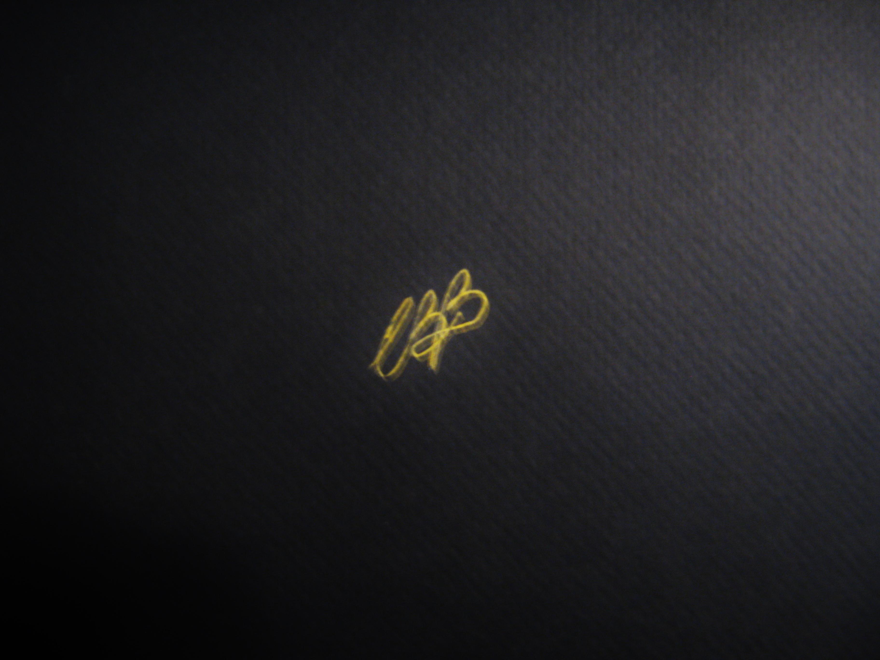 CR Bravo Signature