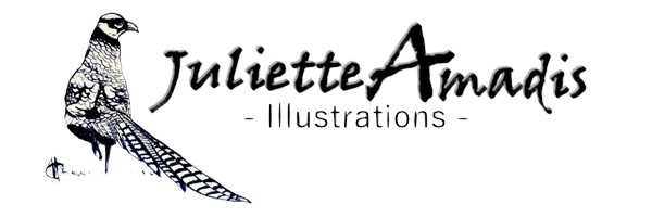 Juliette Amadis Signature