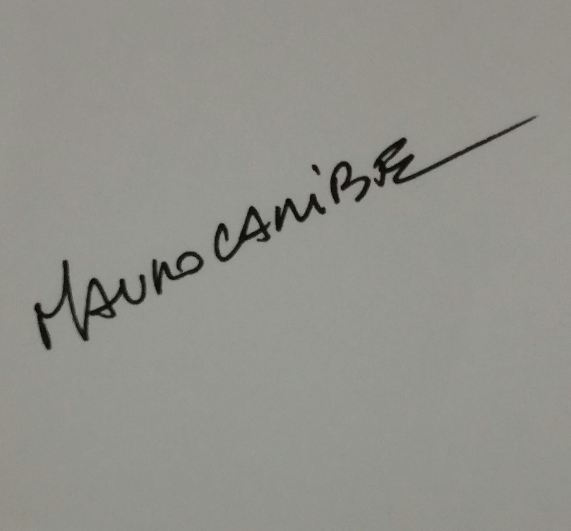 Art in fashon Signature