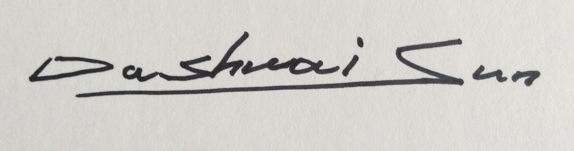 Dashuai sun Signature