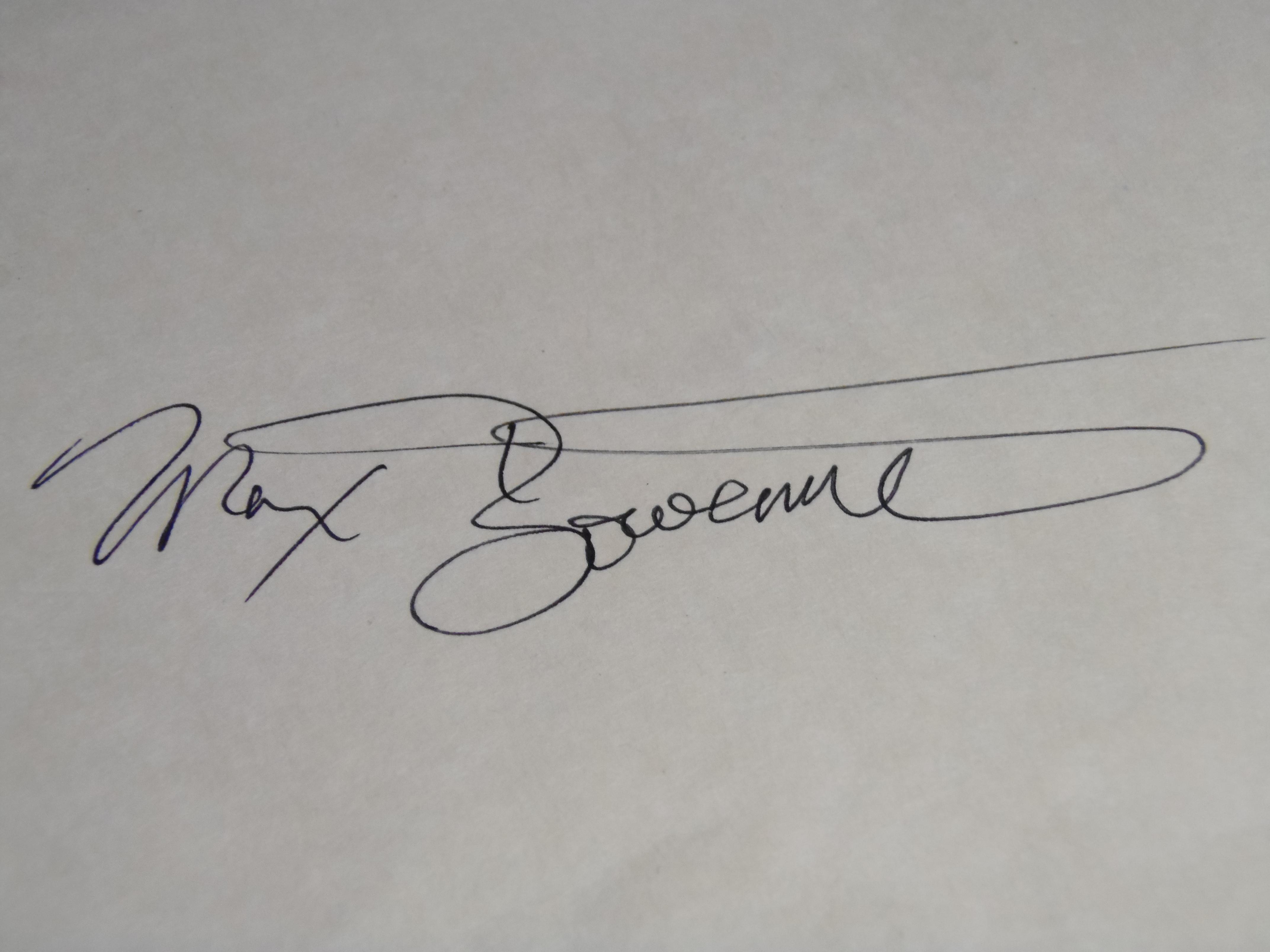 max bowermeister Signature