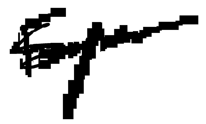 Francois Snyman Signature