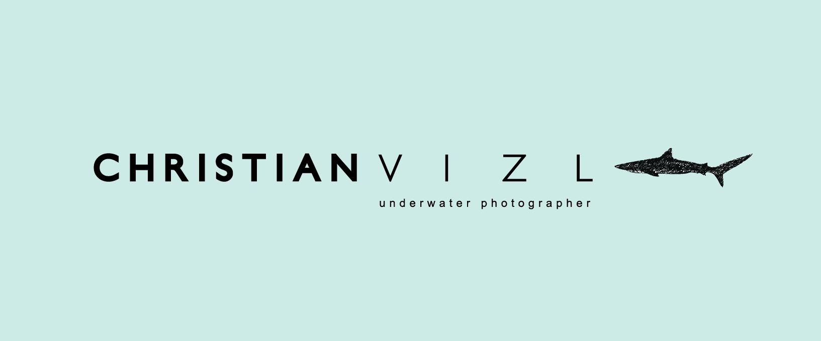 Christian Vizl Signature