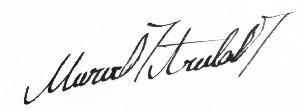 Merve Aruta Signature