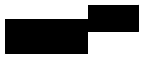 Domingos Aquino Signature