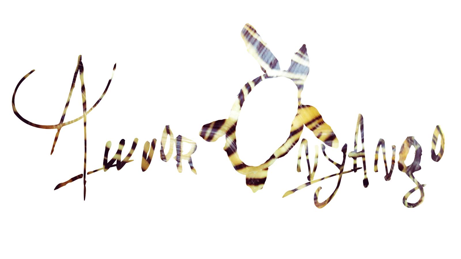 Awuor Onyango Signature