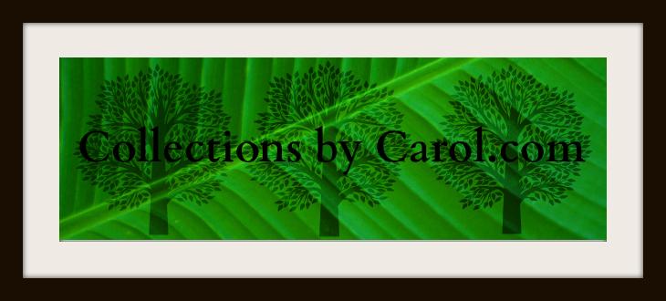 Carol Toepke Signature