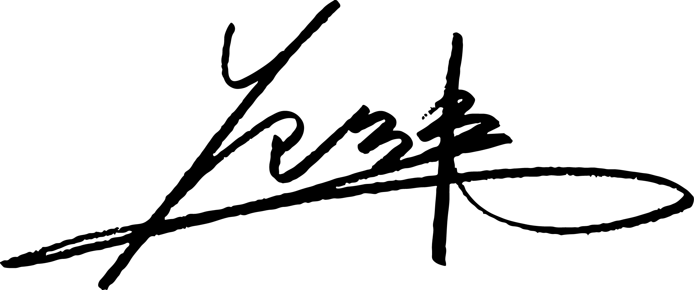 Fenway Fan Signature