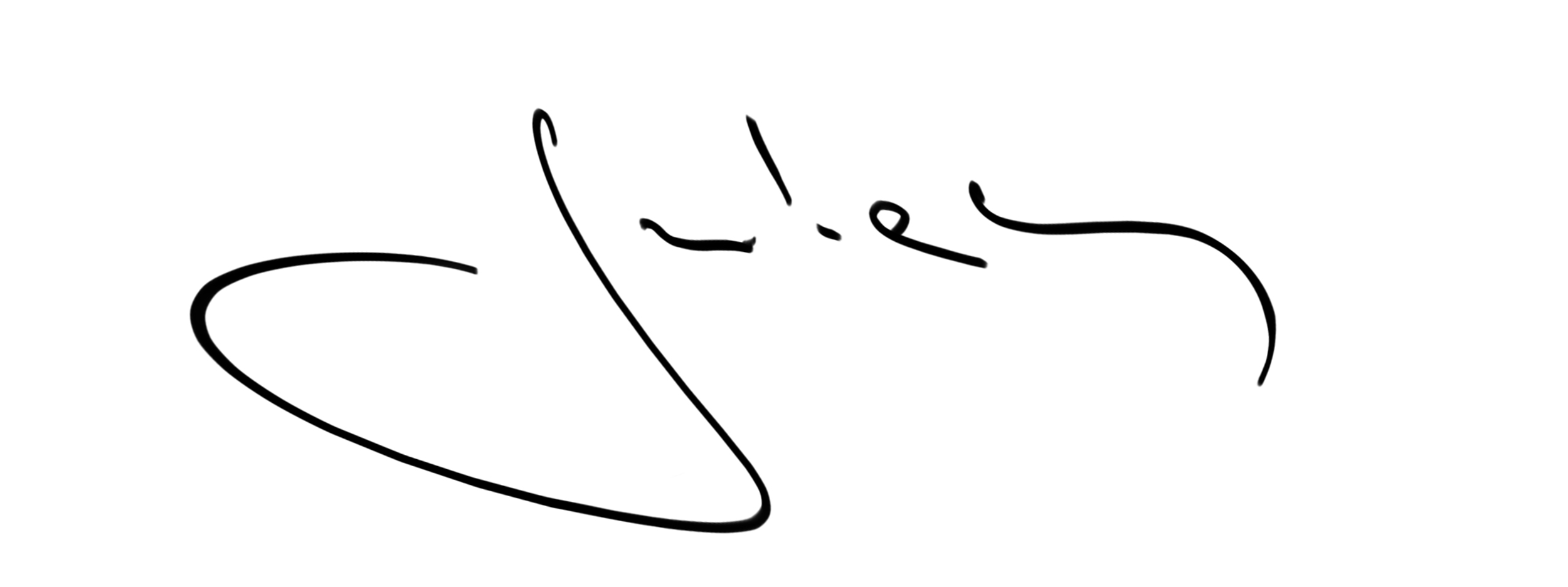 Julian Veverica Signature