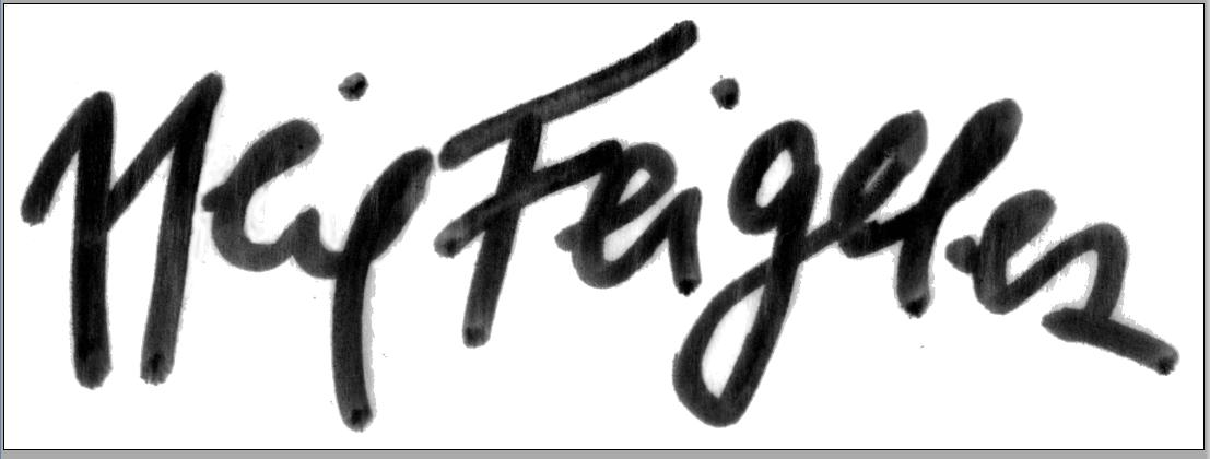 Neil Feigeles Signature