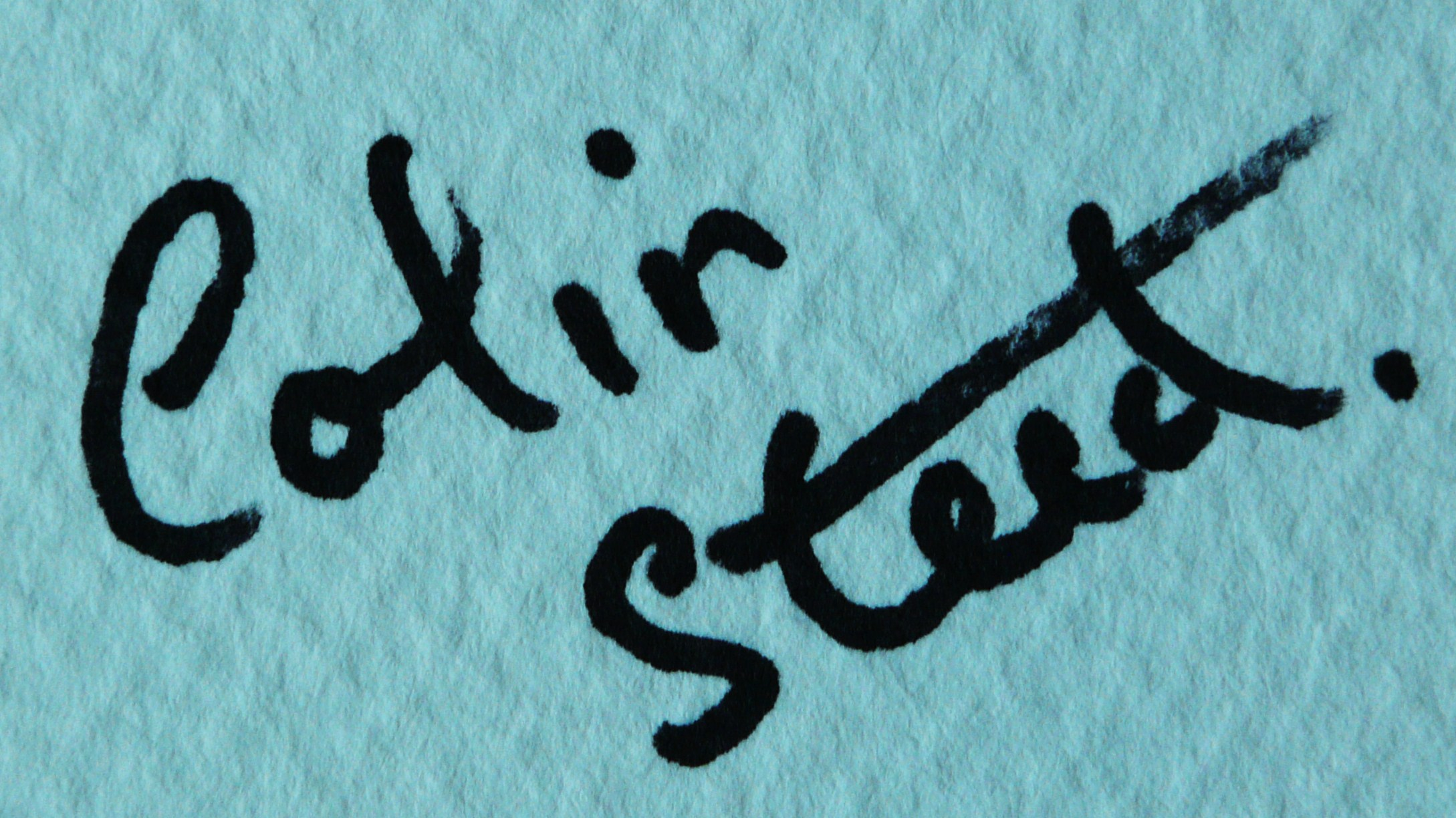 colin Steed Signature