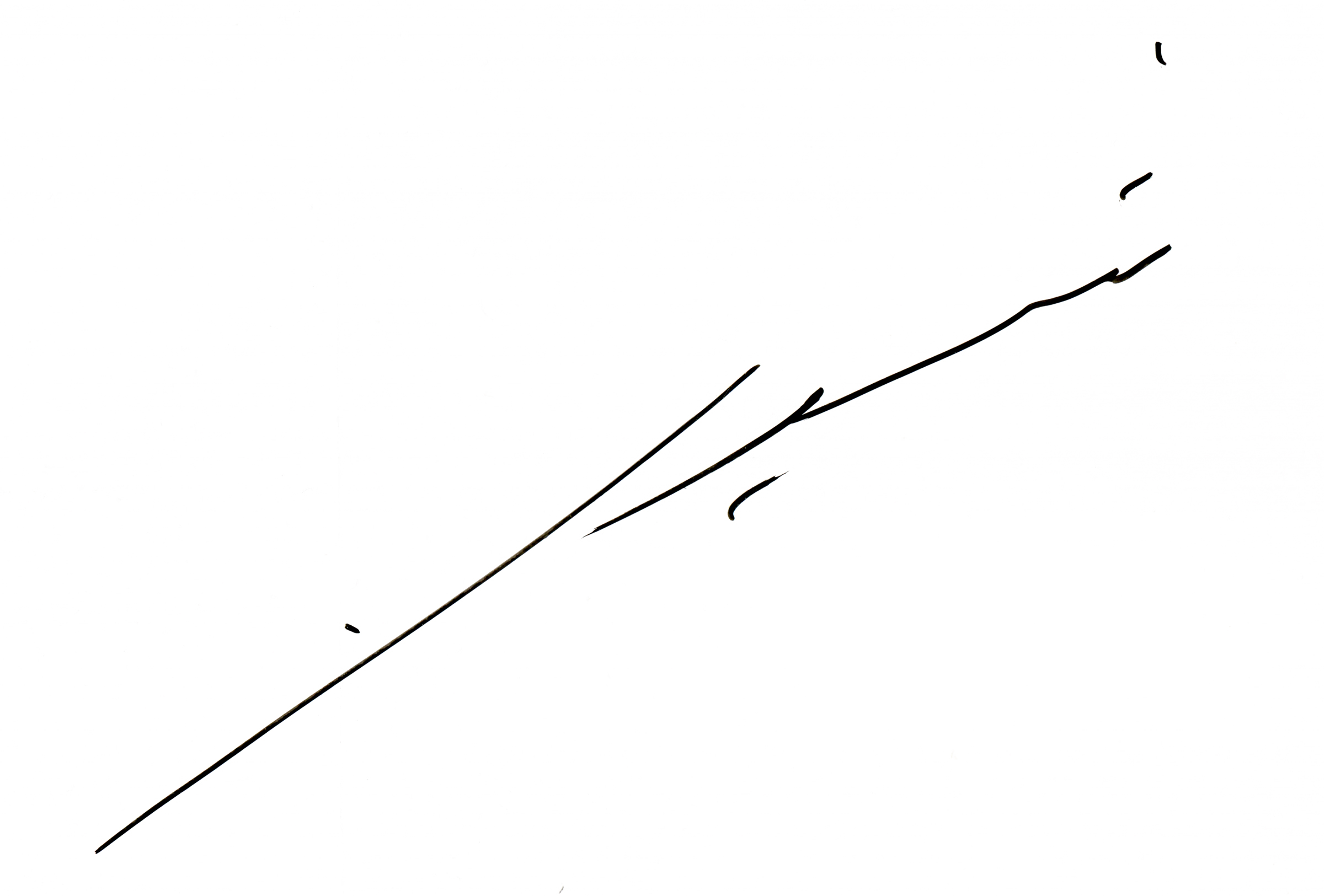 Shiela Samsuri Signature