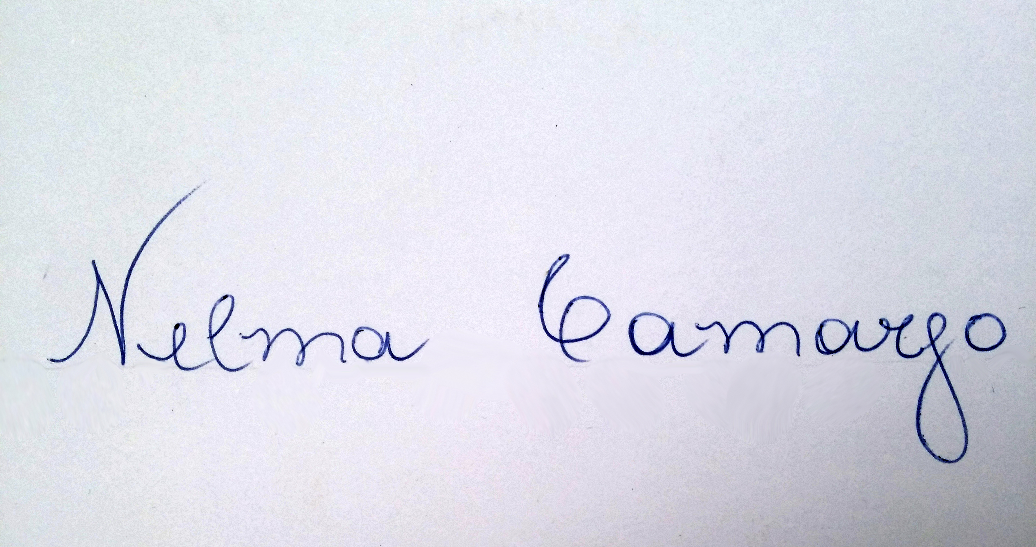 Nelma Camargo Signature