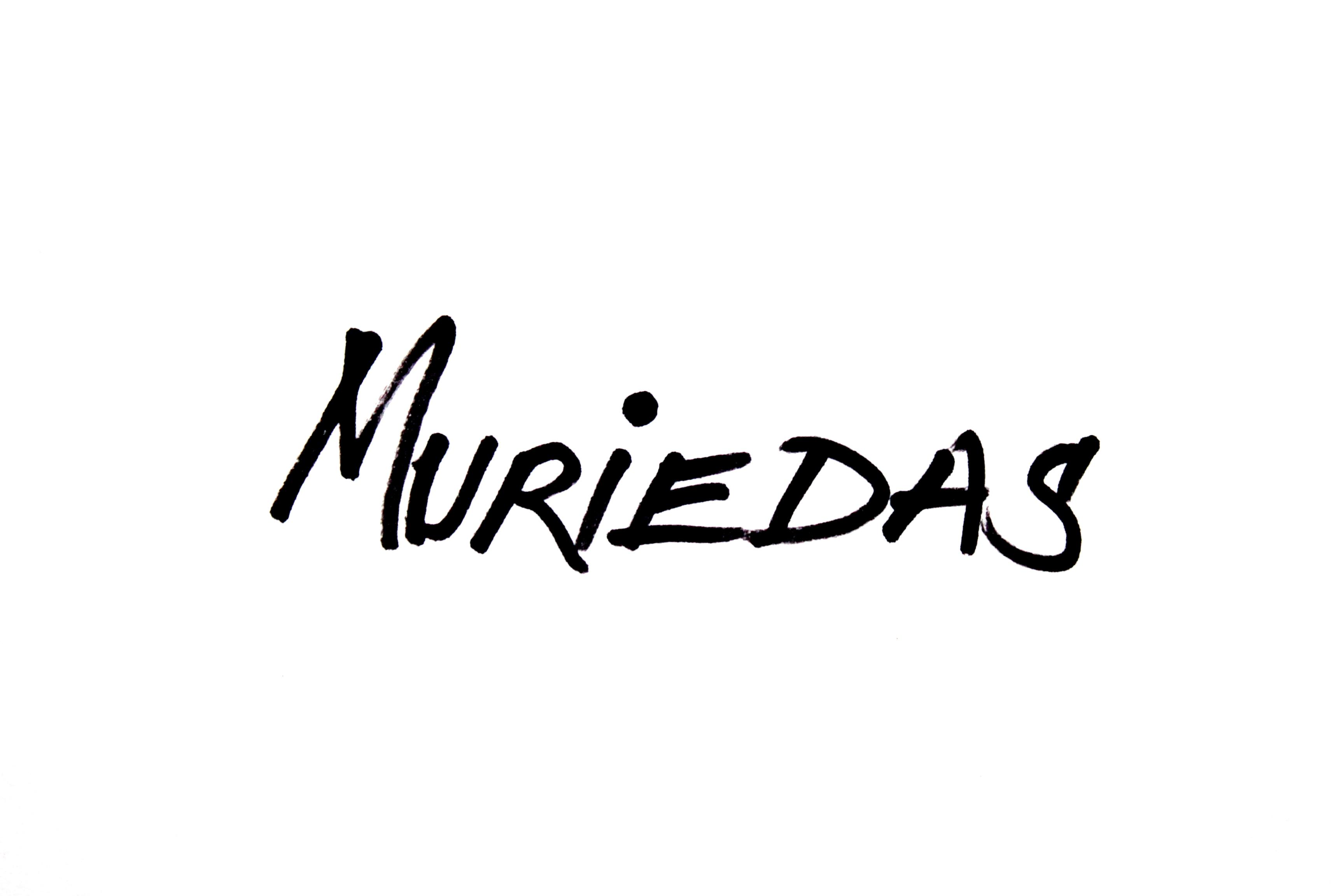 Lorenzo Muriedas Signature