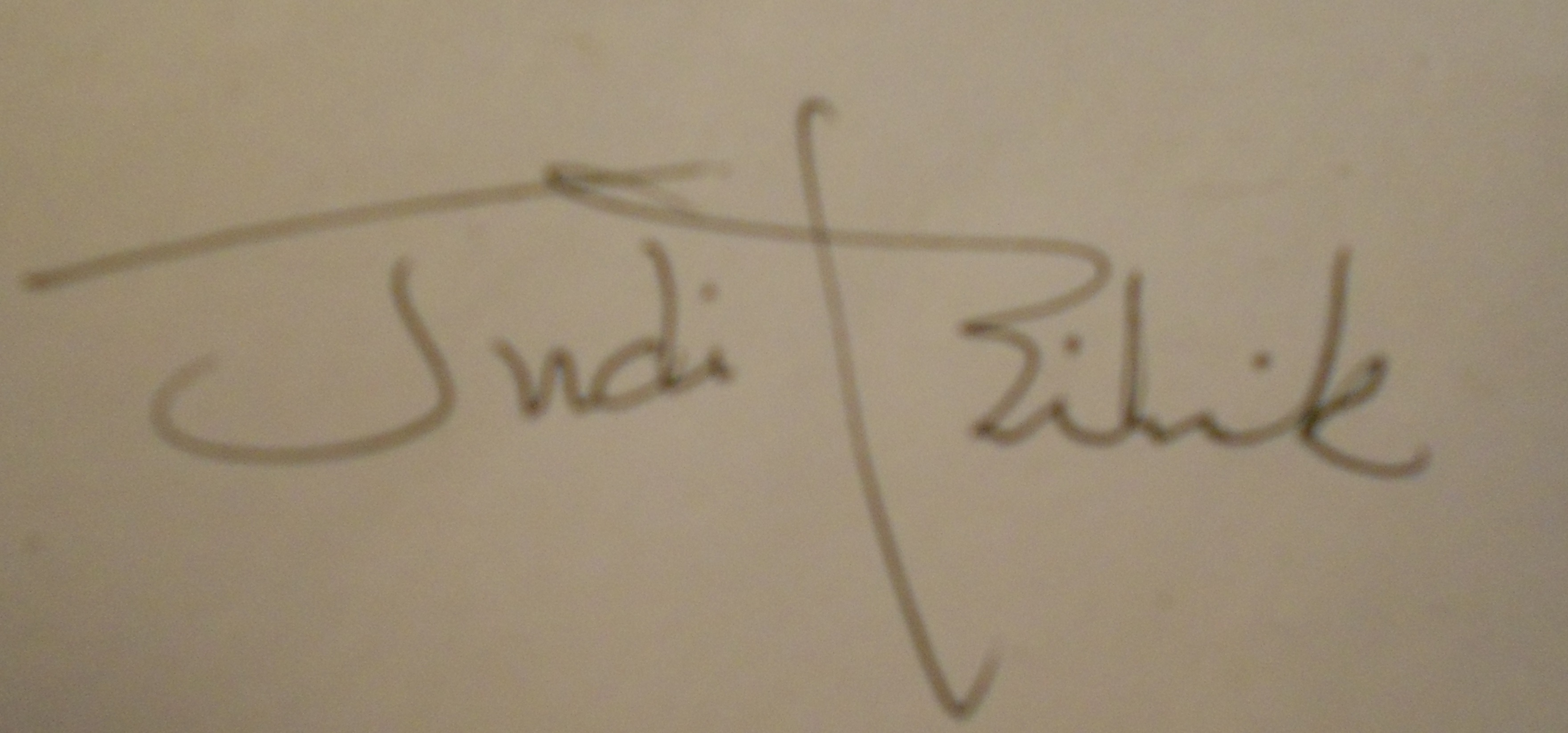 Judith bilick Signature