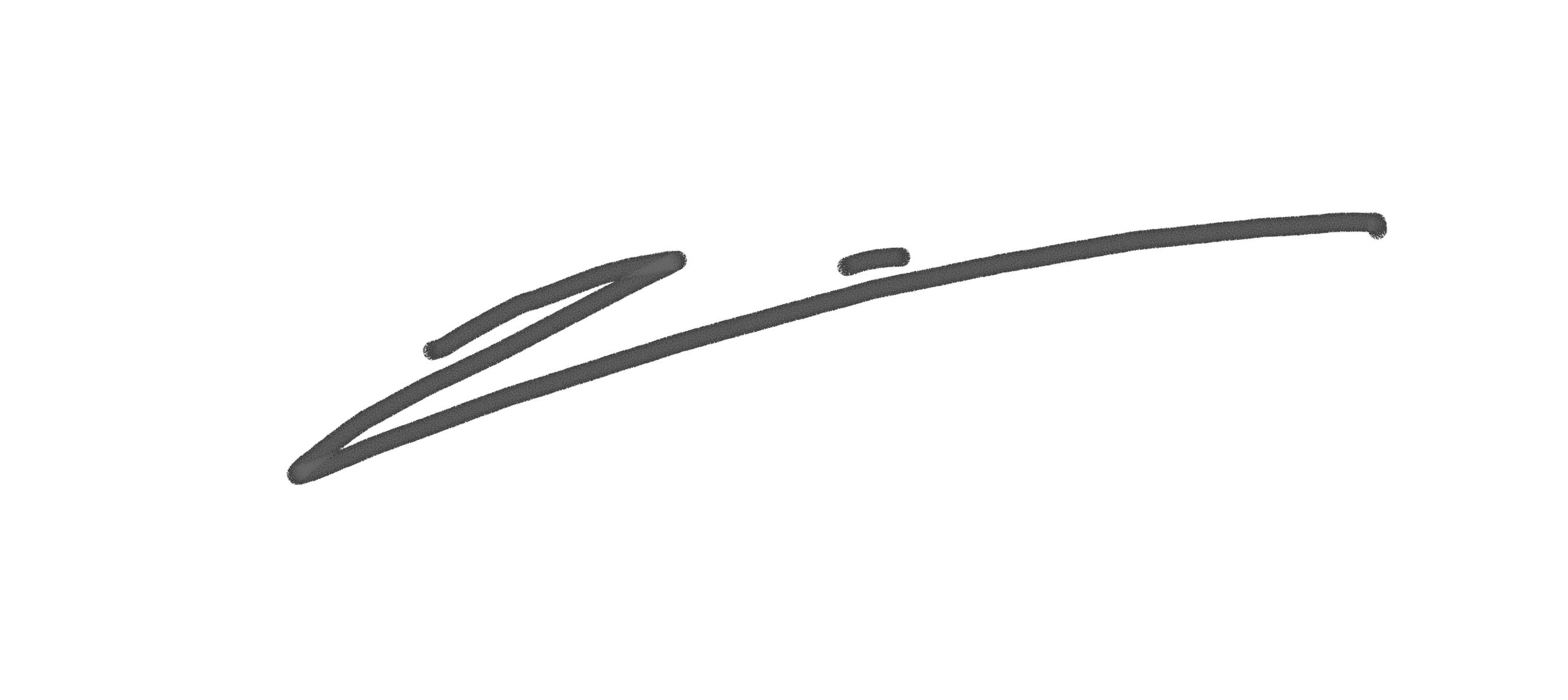 joana toro Signature