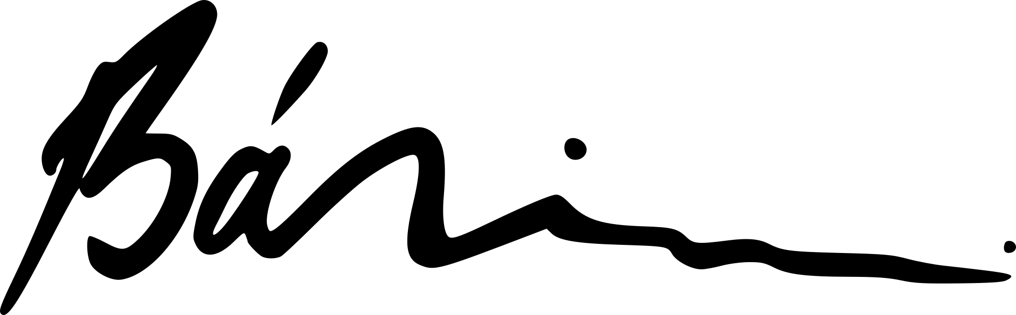 Zita Banyai Signature
