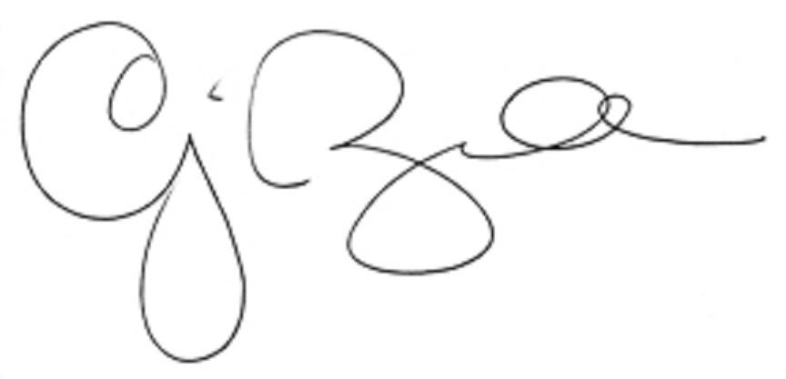 Chelsea balzer Signature