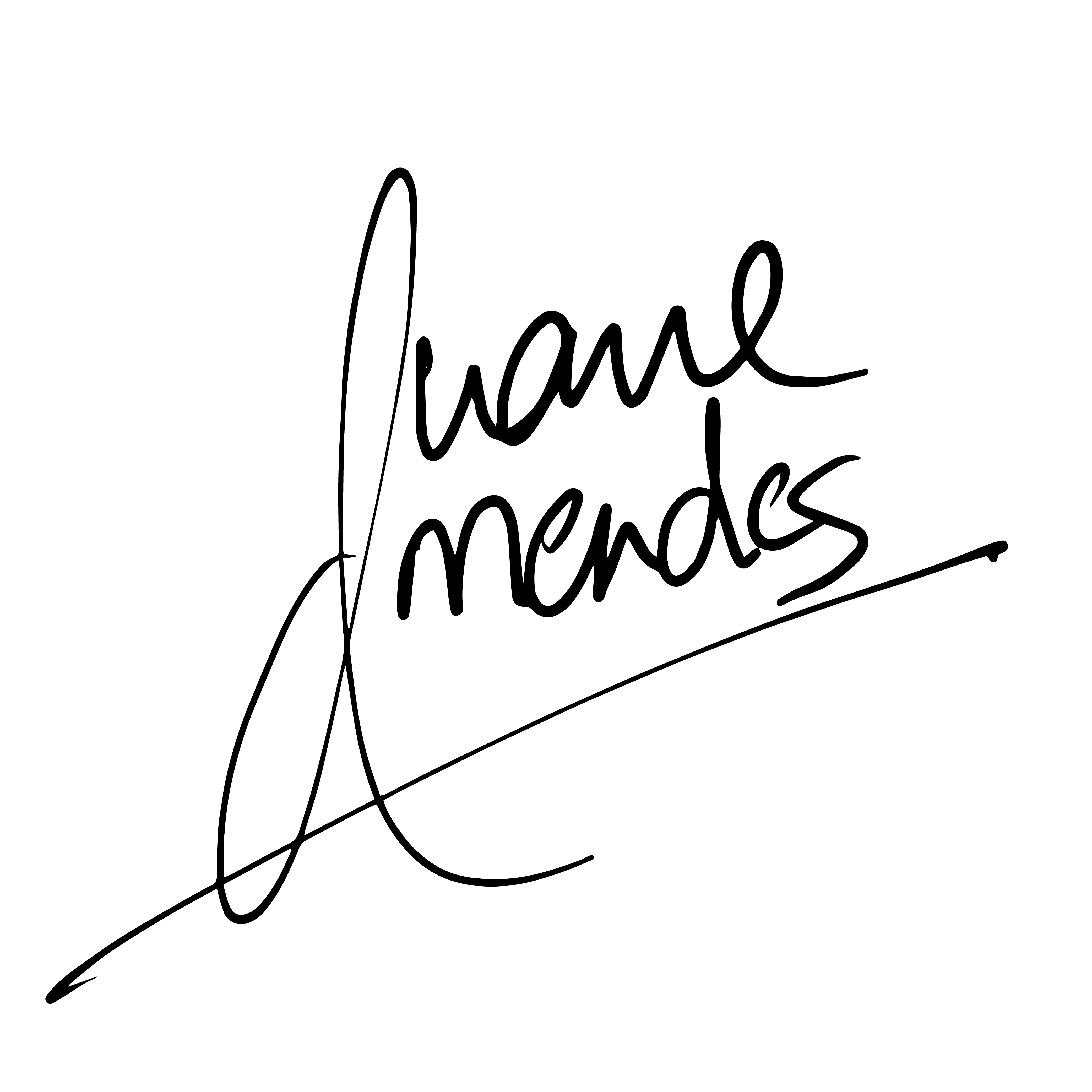 Duane Mendes Signature