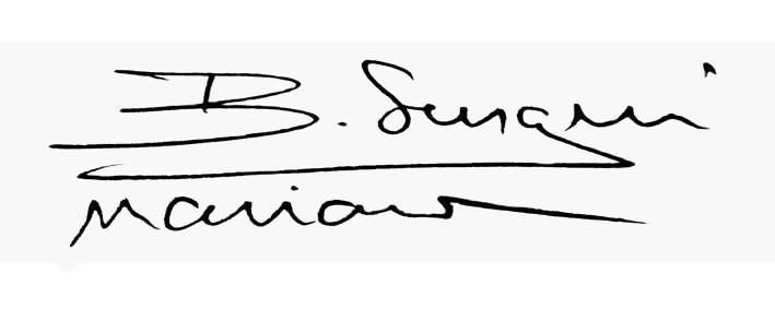 Sergiu-Marian  Bechian Signature