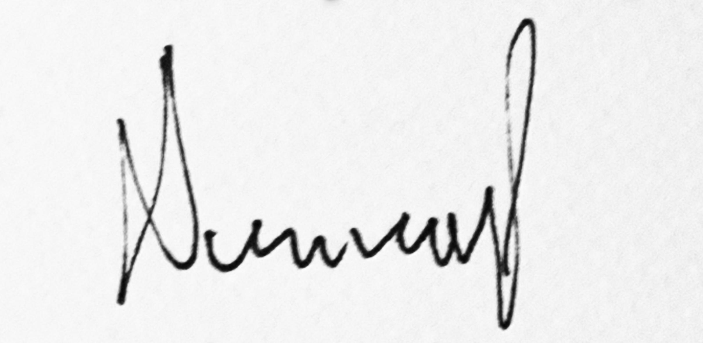 Damira Piližota Signature