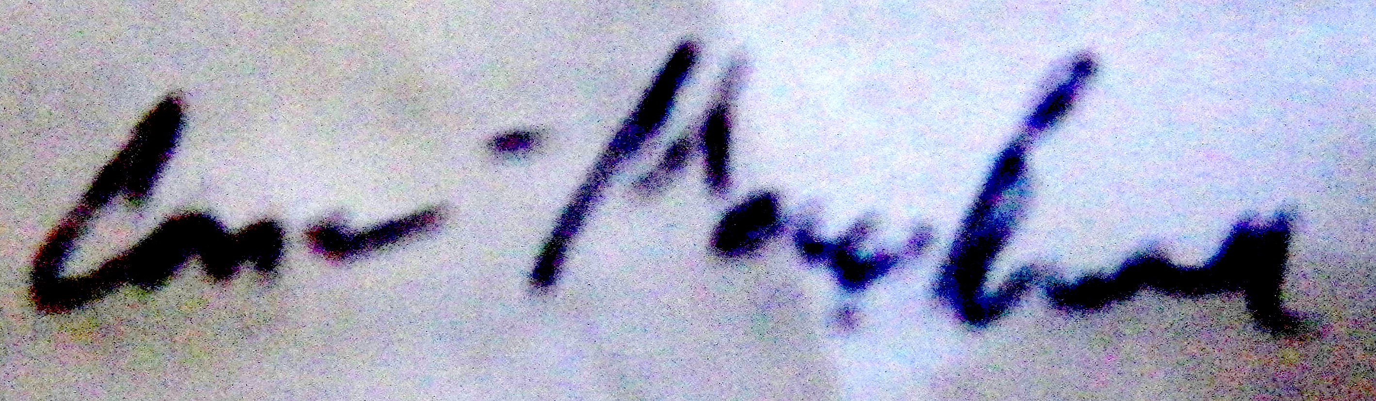 Ann-Marie Brown Signature