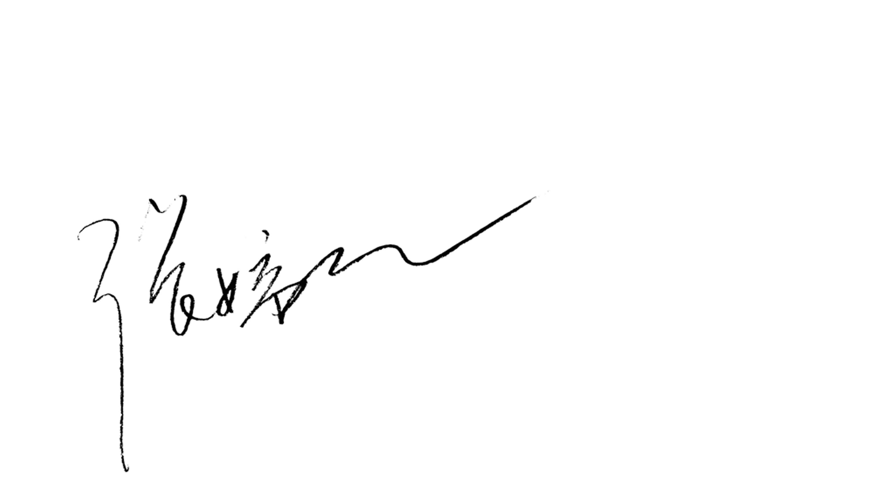 tingting zhang Signature