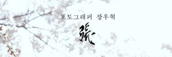 Jang Woohyuck Signature