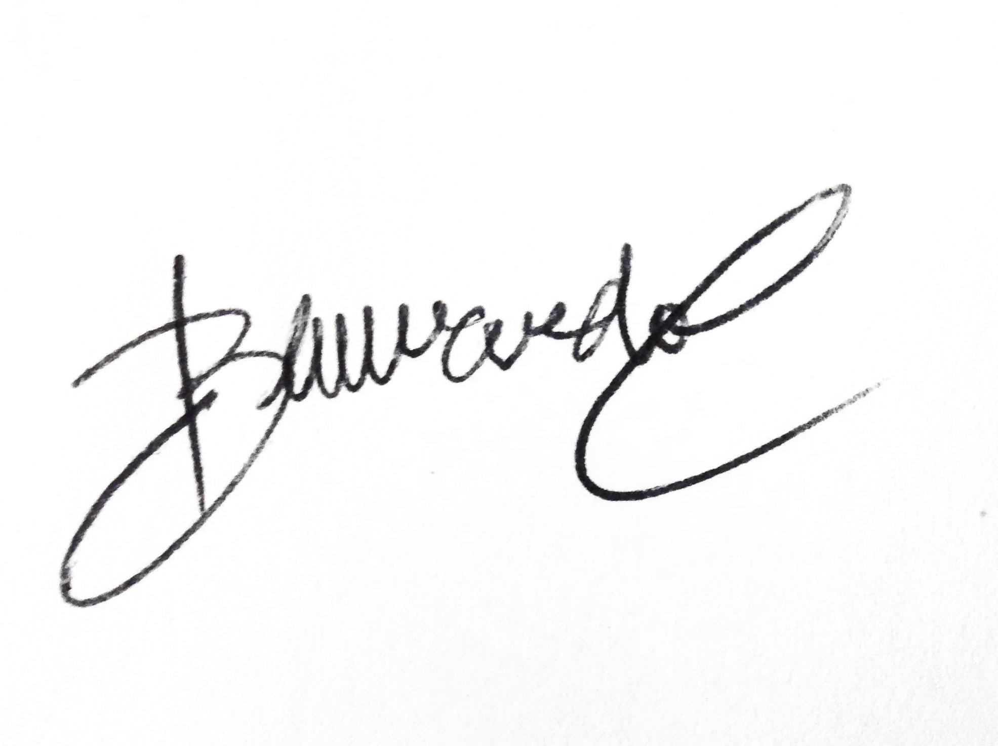 bernardo castañeda Signature