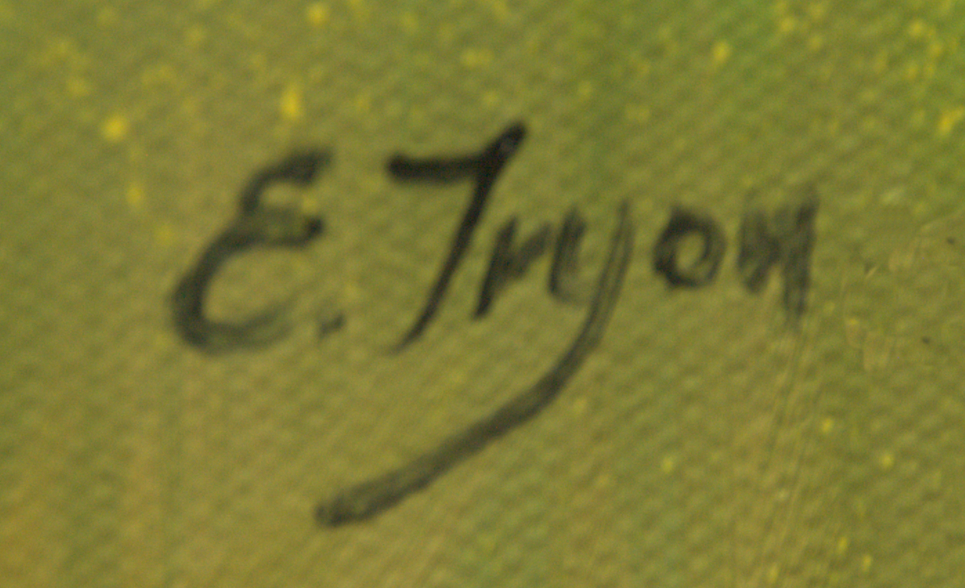 Ellie Tryon-Elgin Signature