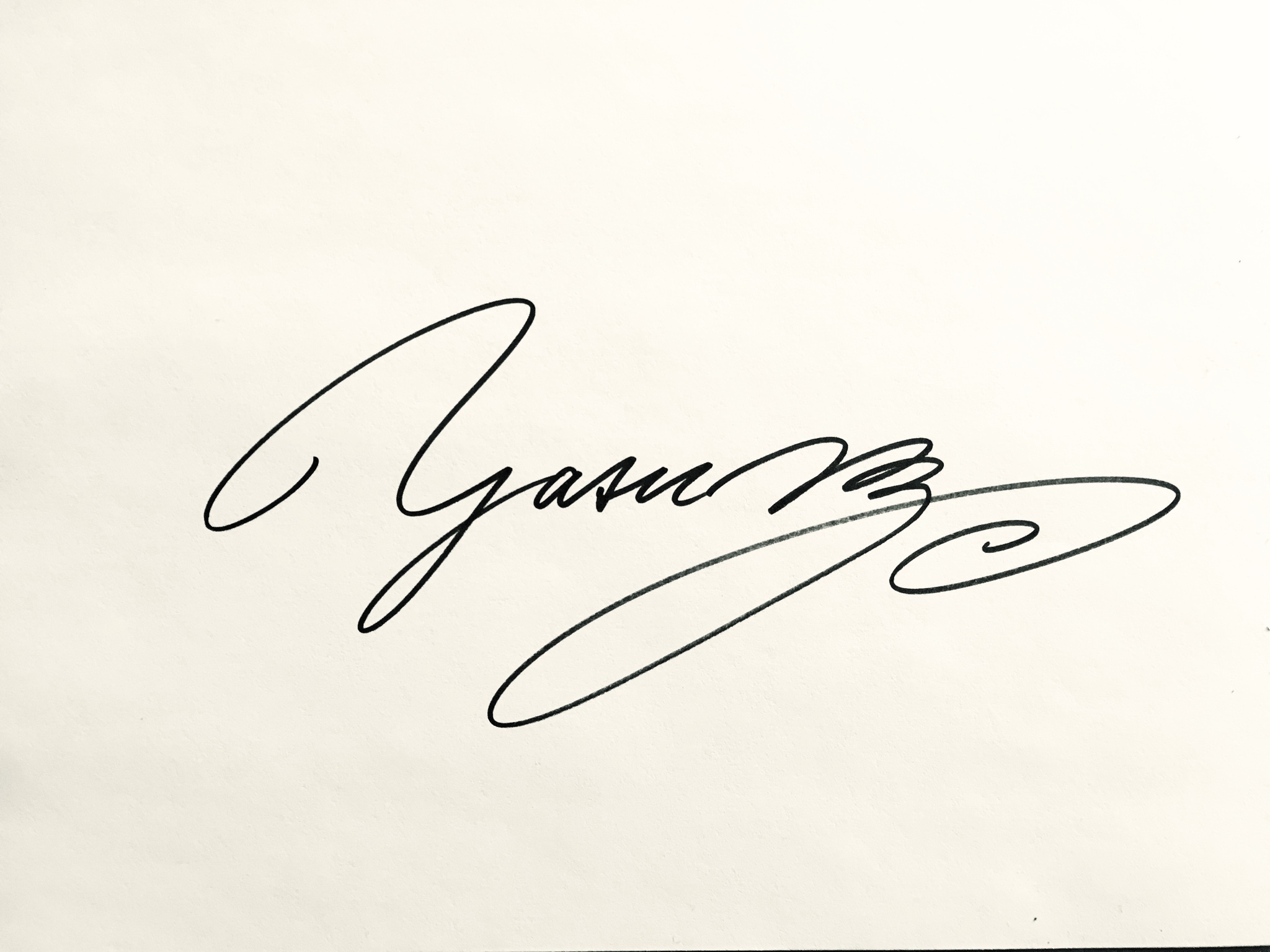 Y A S U Signature